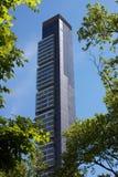 Wolkenkratzer, der unter Bäumen von Madison Square Park steigt Lizenzfreies Stockfoto