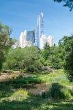 Wolkenkratzer nähern sich Central Park stockfotografie