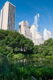 Wolkenkratzer nähern sich Central Park stockbild
