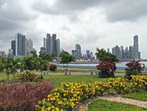 Wolkenkratzer und Blumen Lizenzfreie Stockfotos