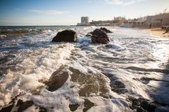 Wolkenmeer und Seemöwen Lizenzfreie Stockfotos