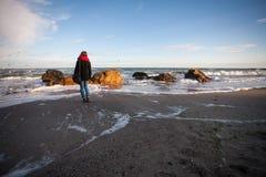 Wolkenmeer und Seemöwen Lizenzfreie Stockbilder