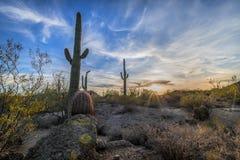 Wolkenstreifen gegen den Wüstenhimmel lizenzfreie stockfotos