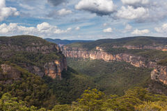 Wollemi nationalpark, NSW, Australien Arkivfoto