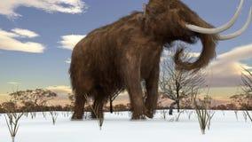 Wolliges Mammut, das in Snowy-Feld-Animation geht stock footage