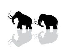 Wolliges Mammutschattenbild lizenzfreie abbildung