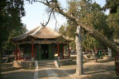 Wollongang Nanyang Arkivbilder