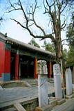 Wollongang Nanyang Arkivbild