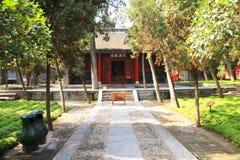 Wollongang Nanyang Royaltyfri Bild