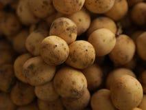 Wollongong do fruto de Tailândia pronto para comer da árvore no ouro amarelo do jardim Fotografia de Stock
