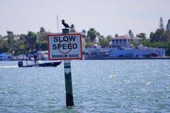 Wolna prędkość podpisuje wewnątrz Zatoka Tampa Fotografia Royalty Free