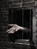 Wolność deszcz Zdjęcie Royalty Free