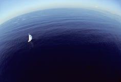 wolność morza Obrazy Royalty Free