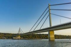 Wolność most Najwięcej Slobode na Danube rzekę w Novi Sad, Serbia zdjęcia royalty free
