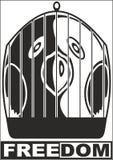 wolności papuga Obraz Royalty Free