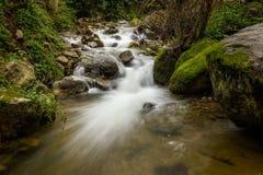 Wolny żaluzja wizerunek spadać kaskadą halnego strumienia w Corsica Obrazy Stock