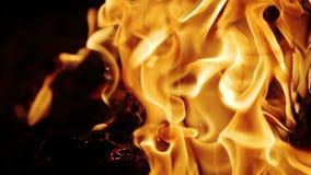 Wolny spalanie graby ogienia zbliżenie zdjęcie wideo