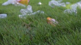 Wolontariusz czyści śmieci parka publicznie Kobiety ręka podnosi w górę plastikowej butelki od trawy, zanieczyszczenie środowiska zbiory
