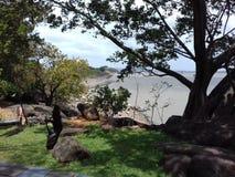 Wolpeper w Srilanka i desktop fotografia stock