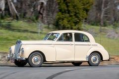 1951年Wolseley 6/80轿车 库存照片