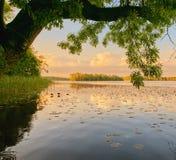 Wolsztyn, ΠΟΛΩΝΙΑ - μια γραφική θέση από τη λίμνη Στοκ εικόνα με δικαίωμα ελεύθερης χρήσης