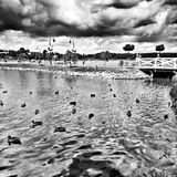 Wolsztyn lake. Artistic look in black and white. Landscape view on the Wolsztyn lake. Wolsztyn, Poland Royalty Free Stock Photography