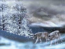 Wolven in de sneeuw royalty-vrije illustratie
