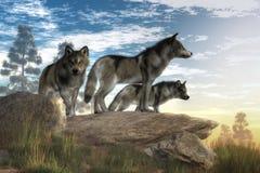 Wolven op de jacht stock illustratie