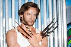 Wolverine bij Mevrouw Tussaud's Royalty-vrije Stock Foto's