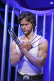 Wolverine wax figure Stock Image