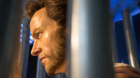 Wolverine wax statue Royalty Free Stock Photo