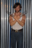Wolverine wax statue Royalty Free Stock Photos