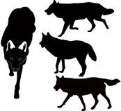 Wolves animals vector Royalty Free Stock Photos