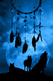 Wolves and dreamcatcher royalty free stock photography