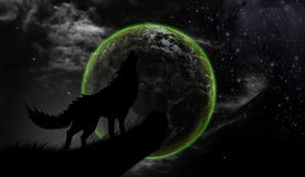 Wolves howl Full Moon Royalty Free Stock Photos