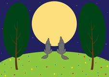 Wolves i ängen Royaltyfria Bilder
