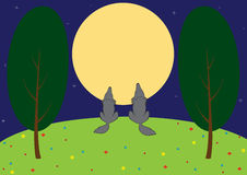Wolves in the meadow Royalty Free Stock Images
