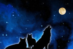 Wolves pack with moon. Wolves pack in silhouette against a blue starred sky with full moon Stock Images