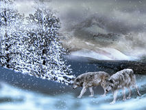 Wolves in the snow royalty free illustration