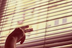 Woman's手打开盲人并且通过窗口看 免版税库存照片