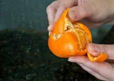 Woman's-Finger, die einer Orange abziehen Lizenzfreie Stockfotografie