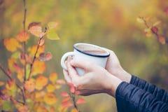 Woman& x27; 拿着杯子在秋季背景的热巧克力的s手 库存照片