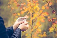 Woman& x27; 拿着杯子在秋季背景的热巧克力的s手 免版税库存照片
