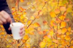 Woman& x27; 拿着杯子在秋季背景的热巧克力的s手 库存图片