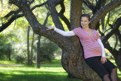 The woman. The pregnant woman costs near a tree Royalty Free Stock Images