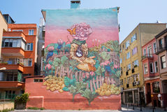 Woman and abstract garden on bright painted wall with form of graffiti in Istanbul Royalty Free Stock Photography