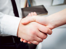 Woman adviser with a businessman. Handshake. Background Stock Image