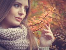 Woman against autumnal leaves outdoor Stock Image
