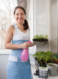 Woman aged grows vegetables Stock Image