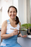 Woman aged grows vegetables Royalty Free Stock Image